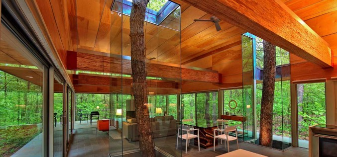 Travis Price Architects designs a home in the forest