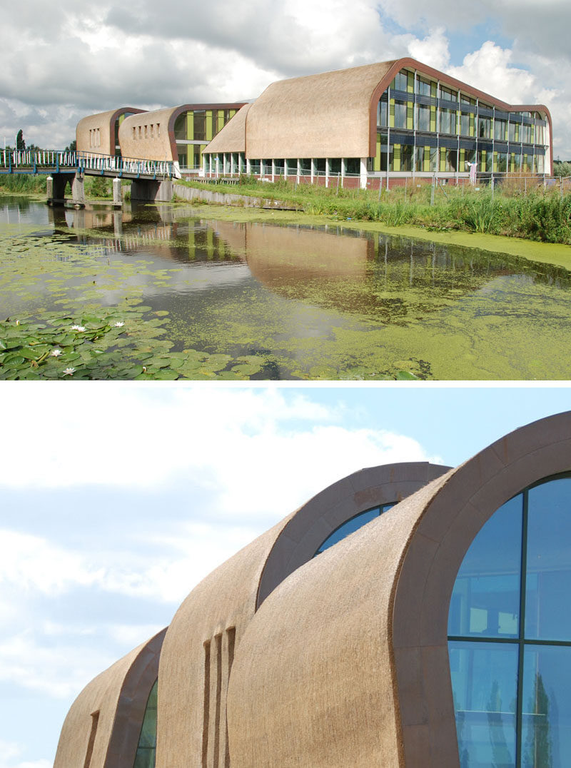12 Examples Of Modern Houses And Buildings That Have A Thatched Roof // All five of the buildings that make up this town hall in the Netherlands are covered with thatched roofing for protection and to add a traditional element to the modern design.
