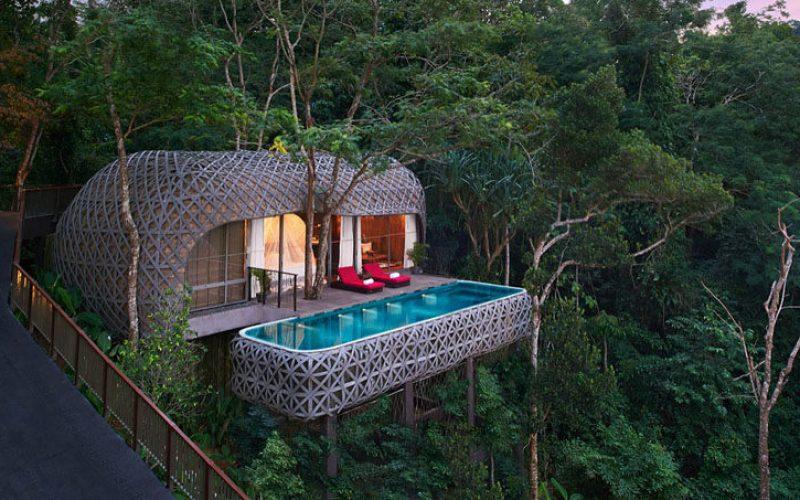 Идея Путешествия – Этот Курортный Отель Находится В Окружении Деревьев И Был Вдохновлен Четыре Fictitous Кланов