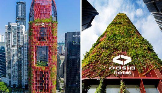 19 Цены Завода Покрыты Снаружи Отель Oasia В Сингапуре