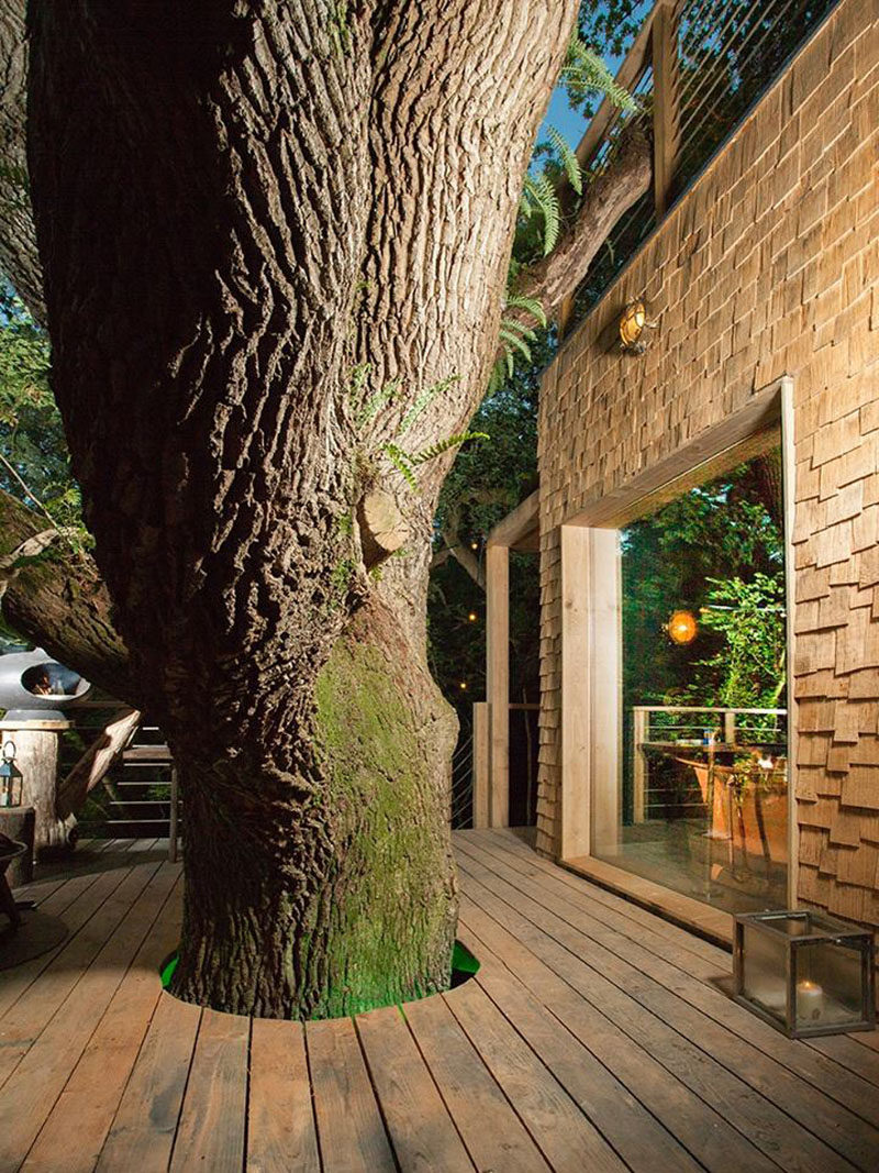 This modern grown-up treehouse has a deck that wraps around a tree.