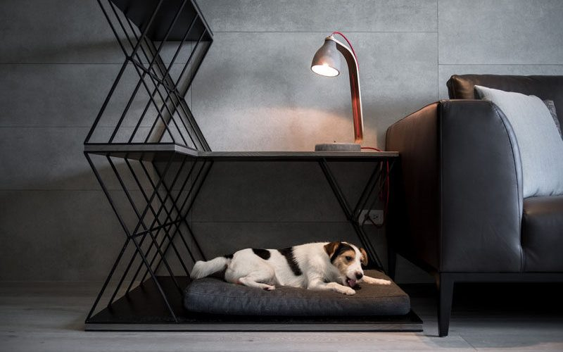 Комбинированная кровать для собаки, столик и перегородка была разработана для этой квартиры