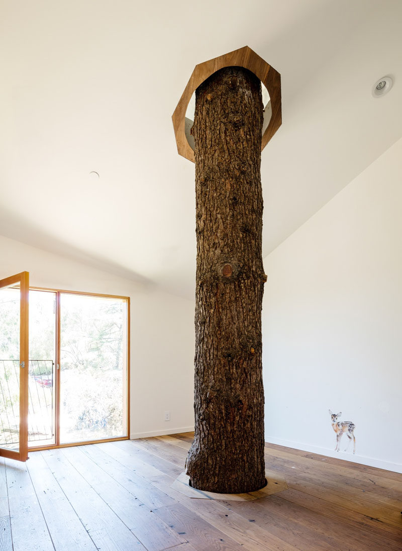 One of the bedrooms in this house has a tree that pierces through the floor and ceiling, and out through the roof.